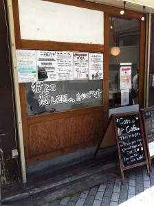蛸薬師の猫カフェ02