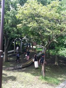 岸根公園の長い滑り台の画像01