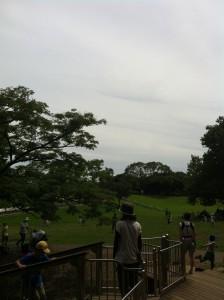 岸根公園の画像(広範囲)01