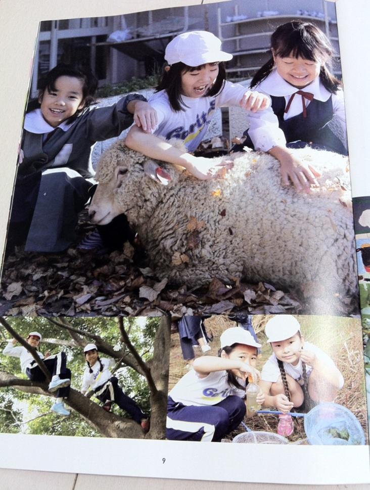 カリタス小学校の学校案内パンフレット(9ページ目)の画像キャプチャ
