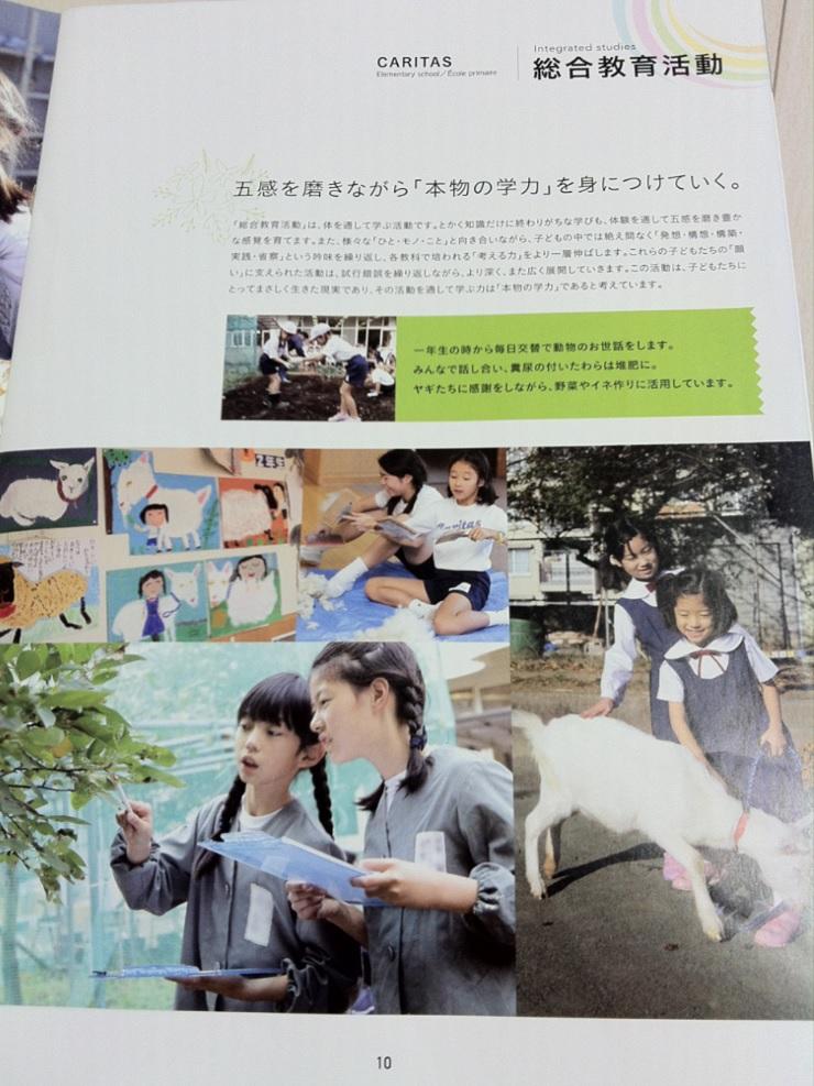カリタス小学校の学校案内パンフレット(10ページ目)の画像キャプチャ
