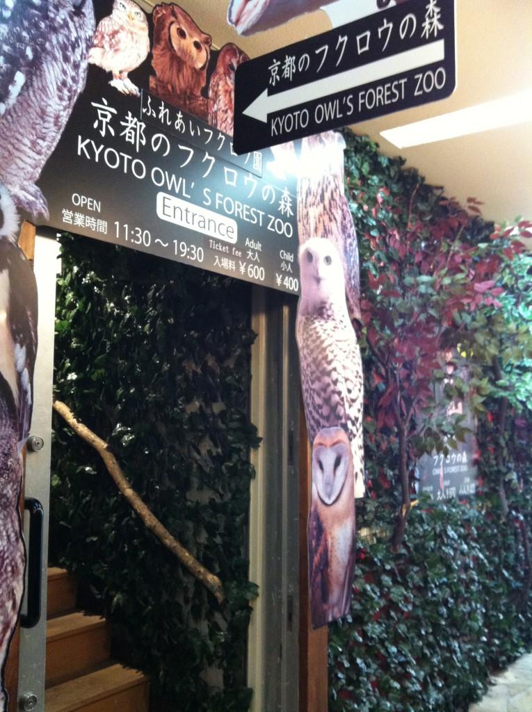 京都のフクロウの森入り口画像