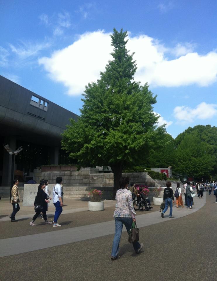 上野公園の混雑状況画像