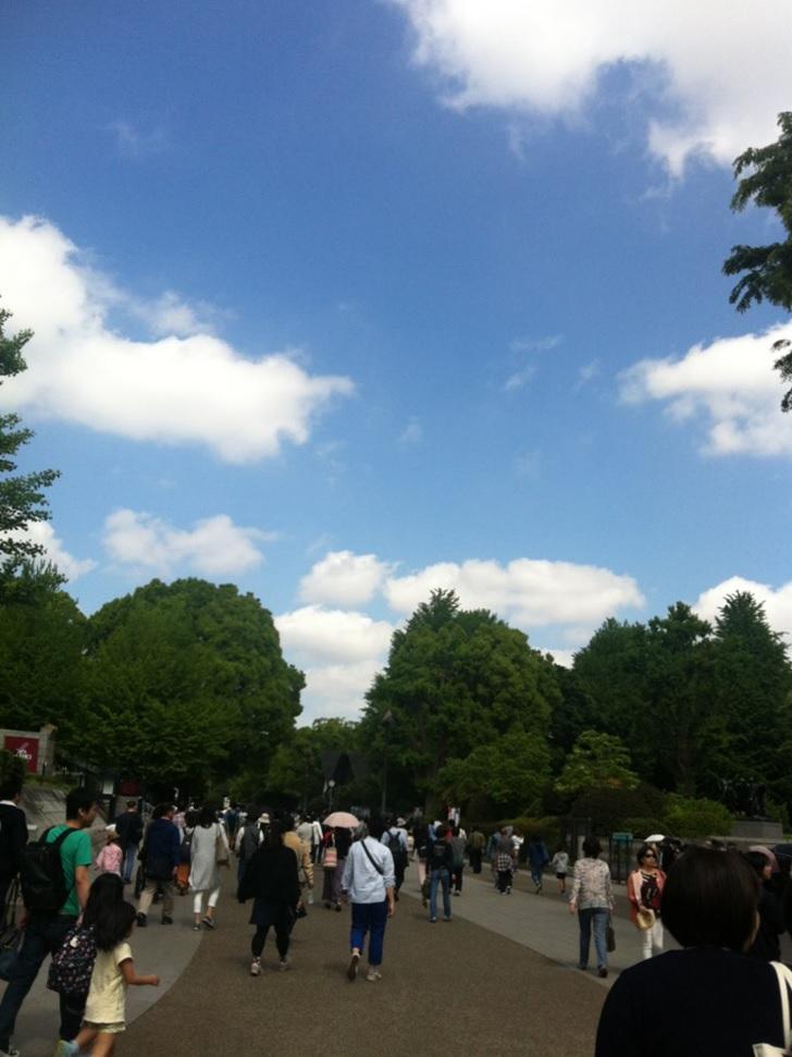 上野恩賜公園から博物館までの道のり画像