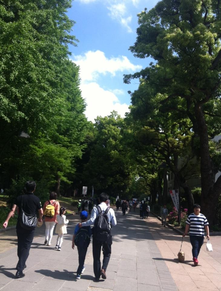 上野恩賜公園から国立科学博物館への道画像