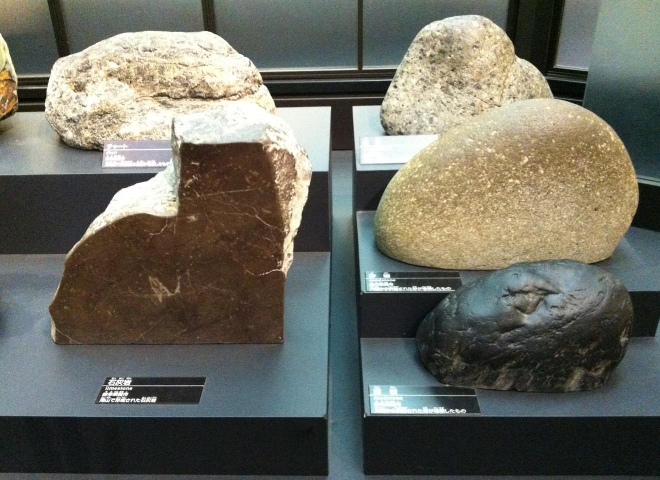 石灰岩などの展示物画像