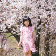 桜の木の下でそよ風に吹かれる女の子の画像