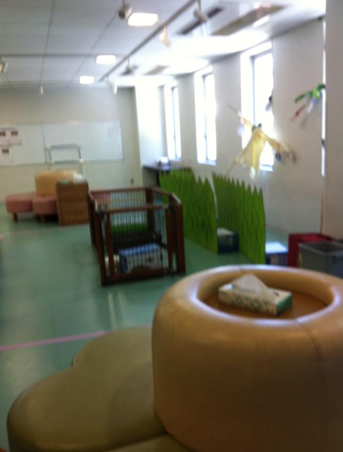 精華小学校の廊下に展示されている物と、動物もいるという画像