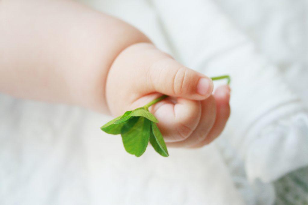 TOEベビーパークの早期教育で子供を幸せにする(イメージ画像)