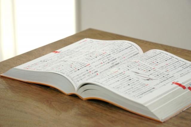 スタディサプリだけで中学受験しようとする小学生が国語の授業で使う辞書