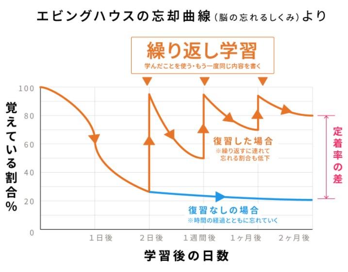 エビングハウスの忘却曲線の復習頻度
